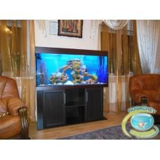Индивидуальное обслуживание и чистка аквариумов