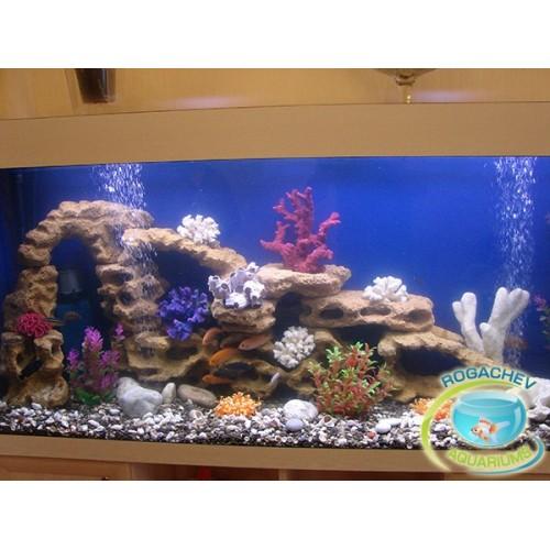 Сделать коралл в аквариум своими руками 440